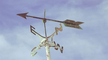 Weather vane - Cecilia Unlimited blog