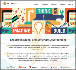 Website home page for Felinesoft, one of Cecilia Unlimited's clients