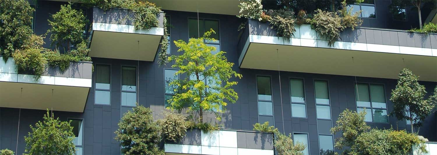 Growing your business and scaling up your communications - tree on an office building - Cecilia Unlimited